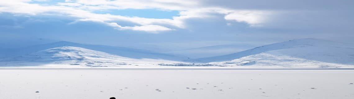 Konya Kars Uçak Bileti